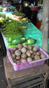 Bang Krachao – Jungle and local market in the middle of Bangkok